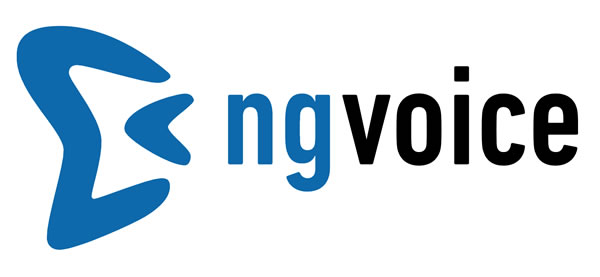 ng-voice